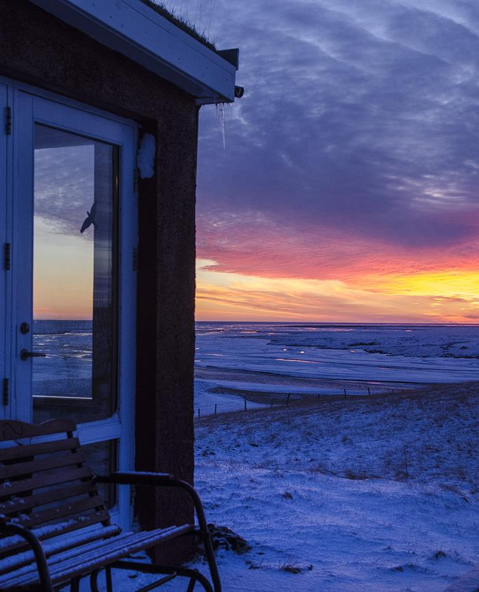 Stay at Hrifunes Guesthouse Iceland